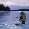 icefisher Avatar